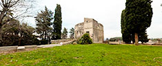 Immagine del virtual tour 'Torrione Medievale '